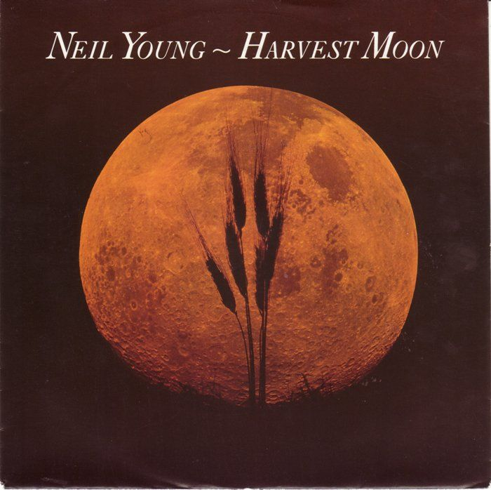165 best Neil Young Clips & Covers images on Pinterest | Neil ...