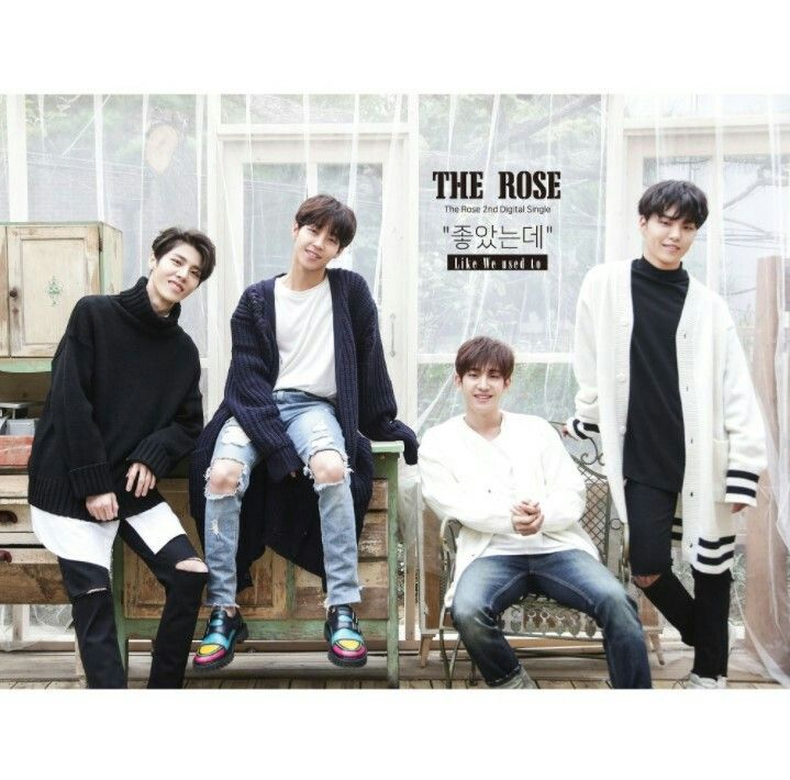 Image result for like we used to the rose album