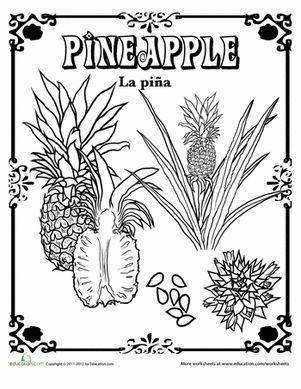 50 best veg worksheet images by teena do on pinterest vegetable garden health foods and. Black Bedroom Furniture Sets. Home Design Ideas