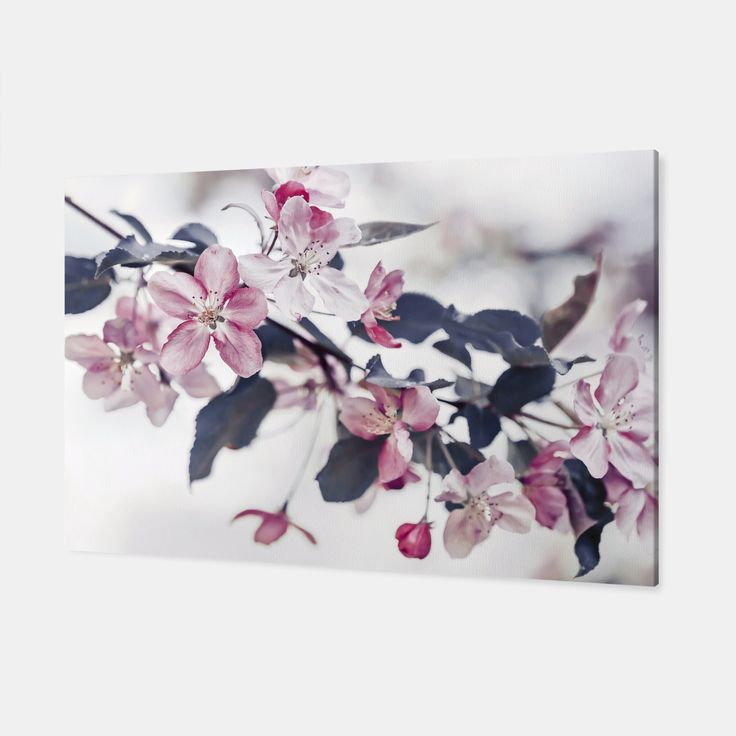 Pink Apple Flowers Canvas, Live Heroes