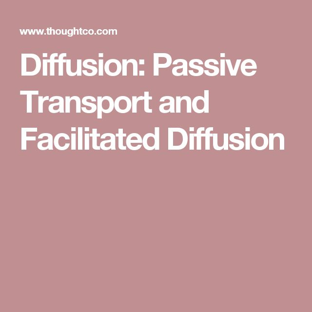 Diffusion: Passive Transport and Facilitated Diffusion