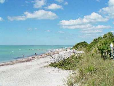 gorgeous Venice Beach, Florida