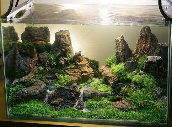 underwater aquarium sand waterfall google search fish tank