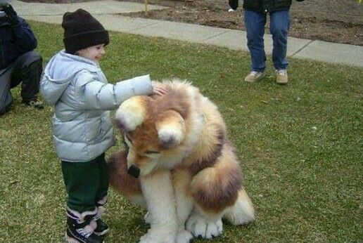 That's not a Dog,that's what Furries usually do?