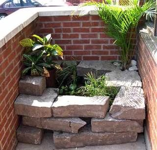 Above Ground Turtle Ponds For Backyards Bing Images Pond Pinterest Goldfish And