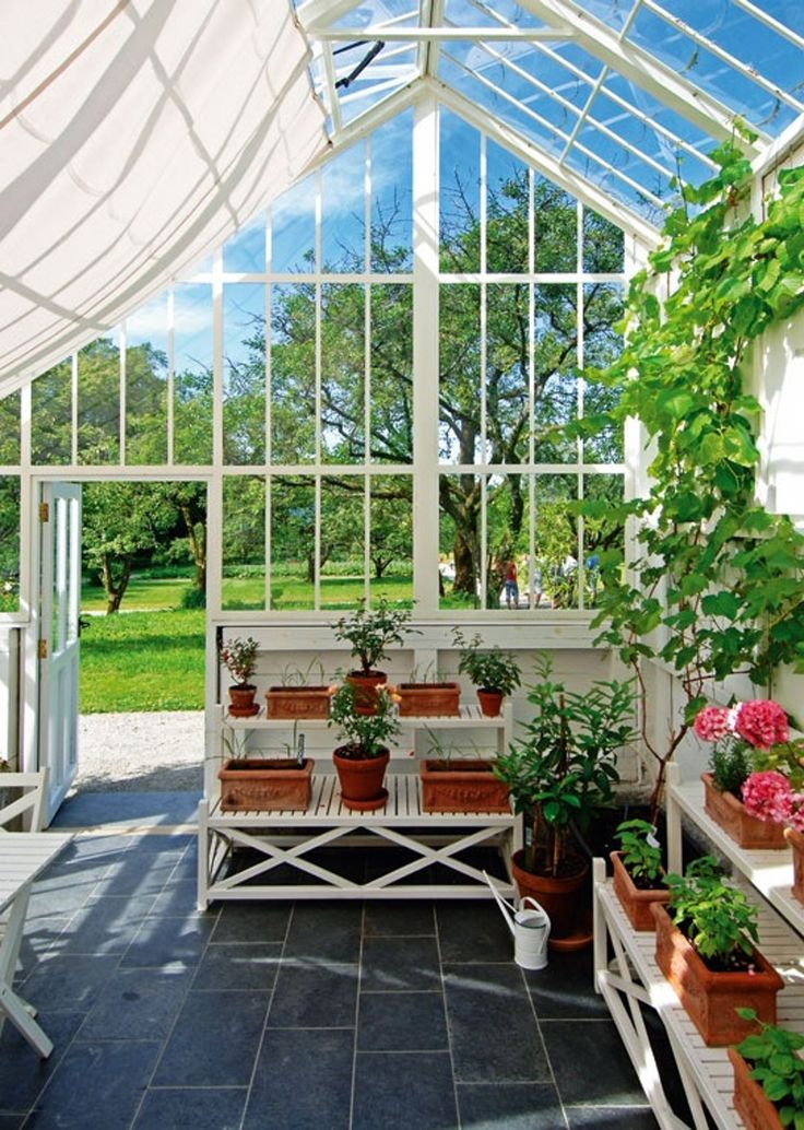 Greenhouses with Mediterranean plants