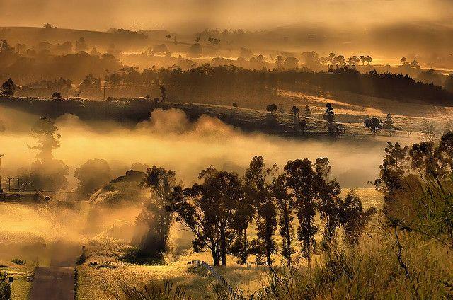 Mists on the Atherton tablelands near Malanda Far North Queensland