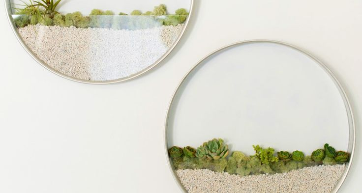 Create the perfect minimalist garden with these circular wall planters