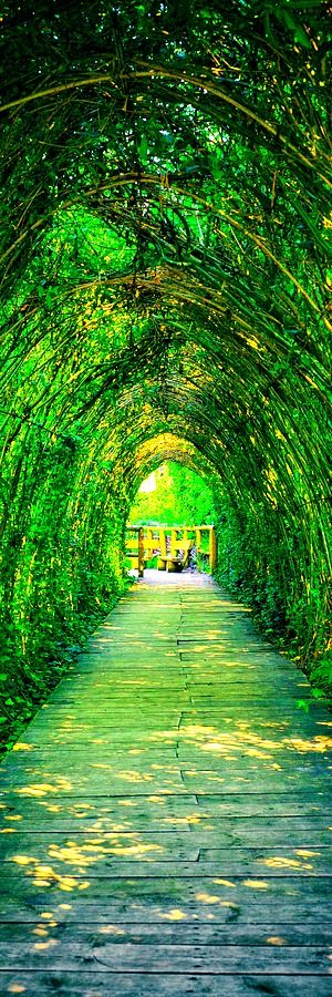TOP 11 Most Beautiful Paths On The Planet