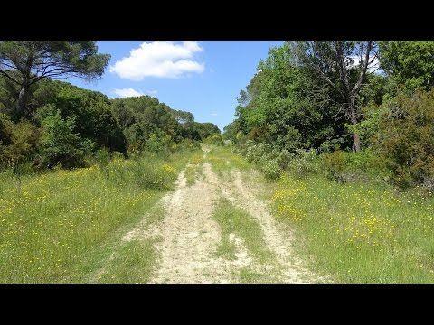 Spazio Informazione Libera: Escursione - Anello di Capraia