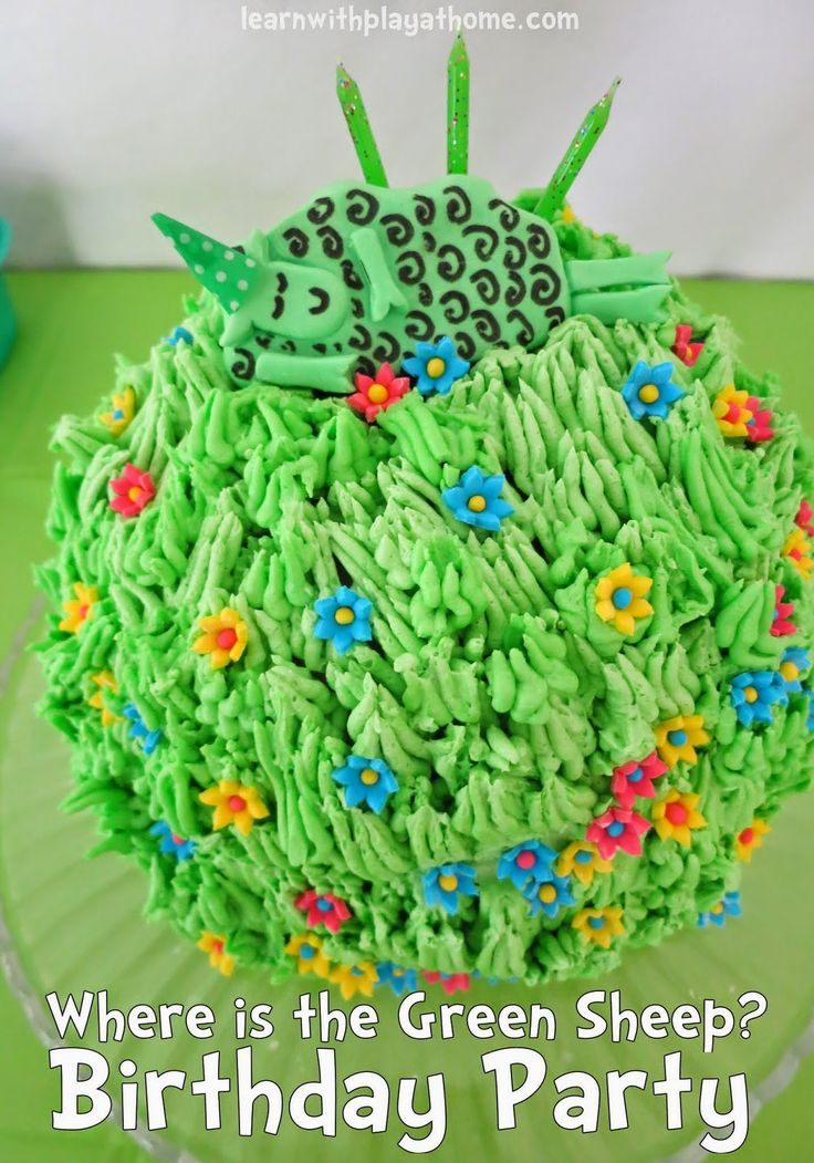 Where is the Green Sheep? Children's Birthday Party (love it!!)