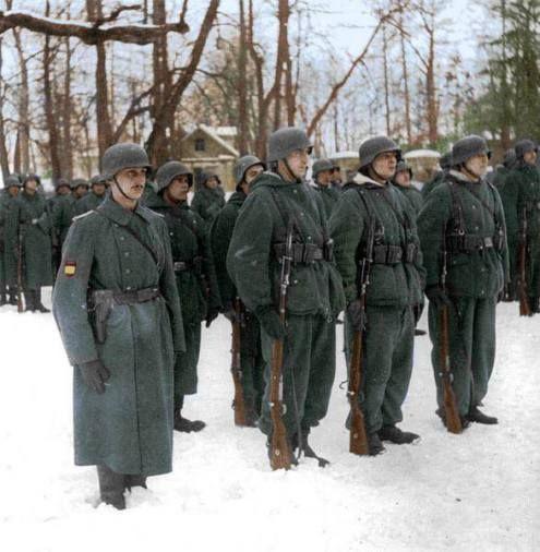 250 Infantry DivisionBlue Division