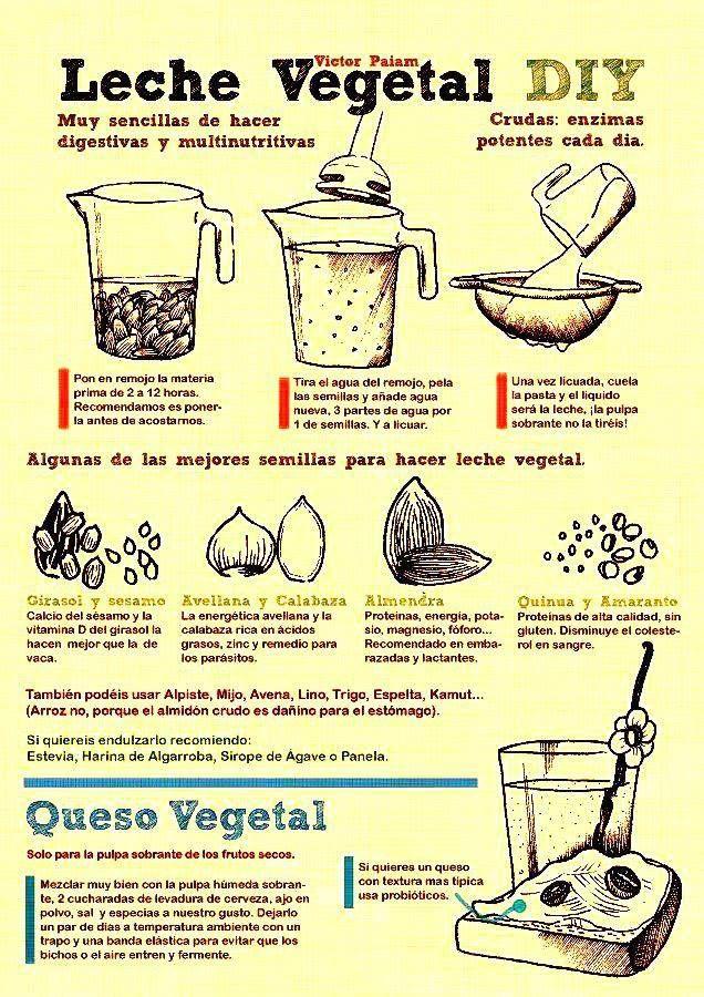Como hacer lecha vegetal