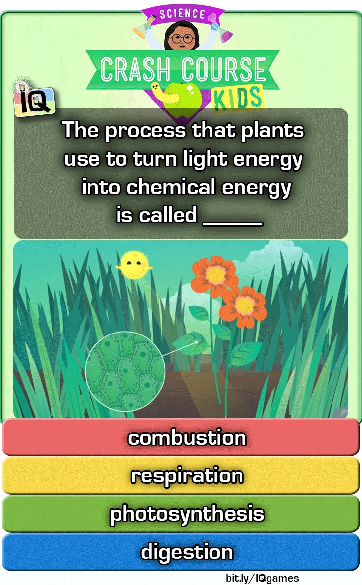 Engage your brain with Interactive Quizzes on TpT. https://www.teacherspayteachers.com/Product/Crash-Course-Kids-From-Molecules-to-Organisms-IQ-NGSS-with-worksheets-2943327 ...