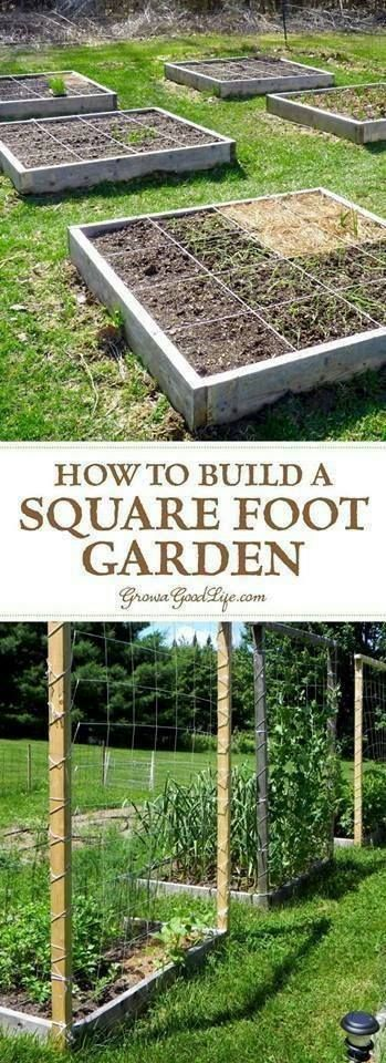 #Gardening : How to Plan Your Square Foot Garden