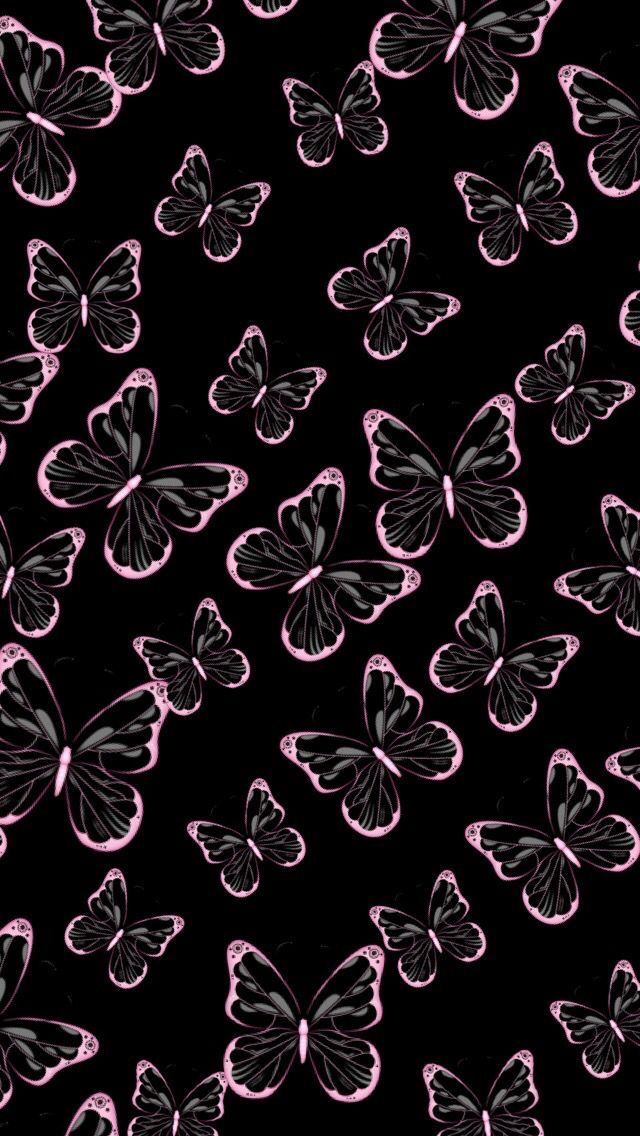 Pink Fringe Butterfly Wallpaper Iphone Blue Butterfly Wallpaper Butterfly Wallpaper