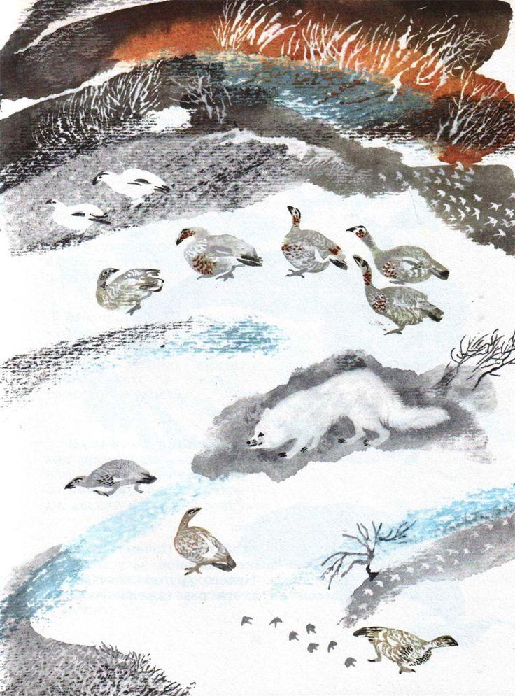 "Никита Чарушин «С севера на юг» | ""Картинки и разговоры"""