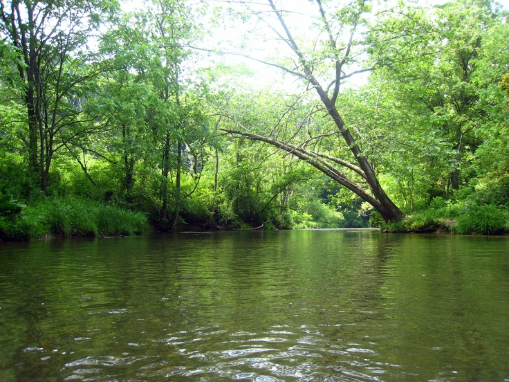 8 best pennsylvania trout trip images on pinterest trout for Best trout fishing in pa