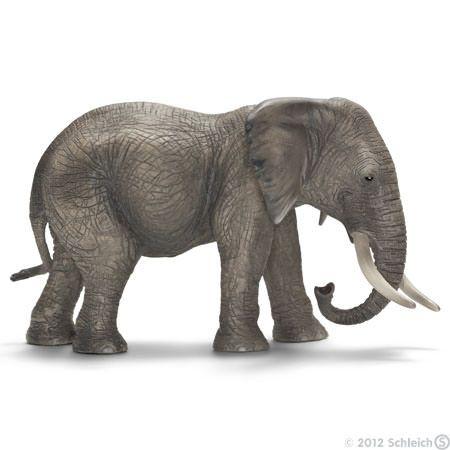 Afrikansk elefantku 14657