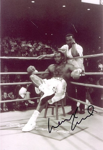 Lennox Lewis, Britain gets an undisputed heavyweight champion