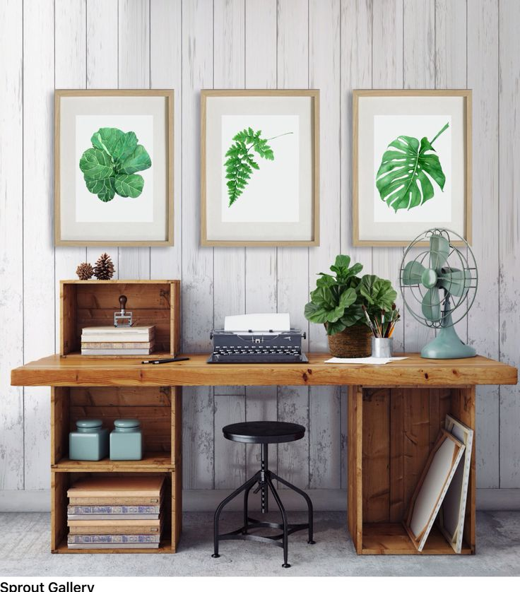 sprout gallery Botanical art