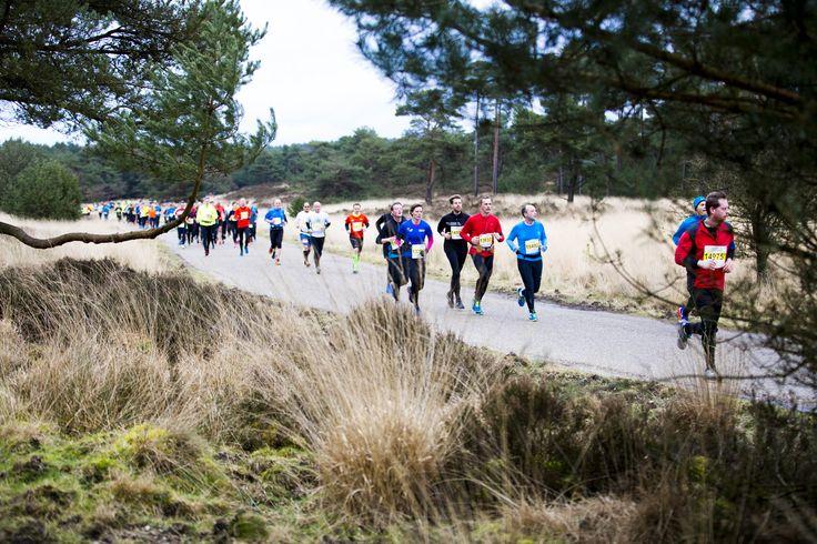 Inschrijving Midwinter Marathon 2017 is geopend