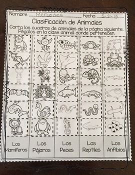 FREEBIE! MUESTRA GRATIS DE CLASIFICACIóN DE ANIMALES Y ORGANIZACIóN DE DATOS - TeachersPayTeachers.com