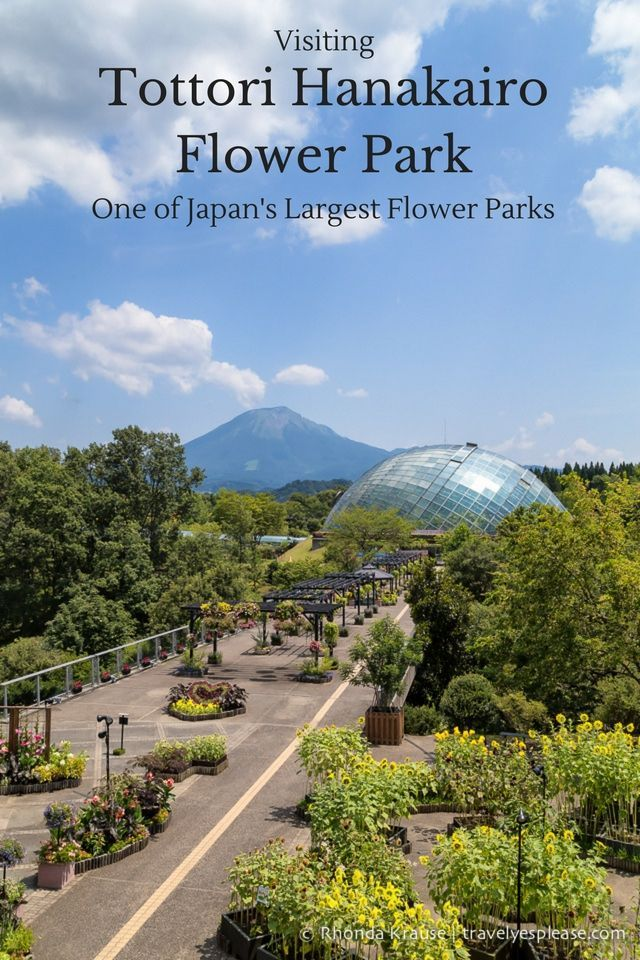 travelyesplease.com   Visiting Tottori Hanakairo Flower Park- One of Japan's Largest Flower Parks (Blog Post)