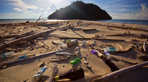 oceans pollution article