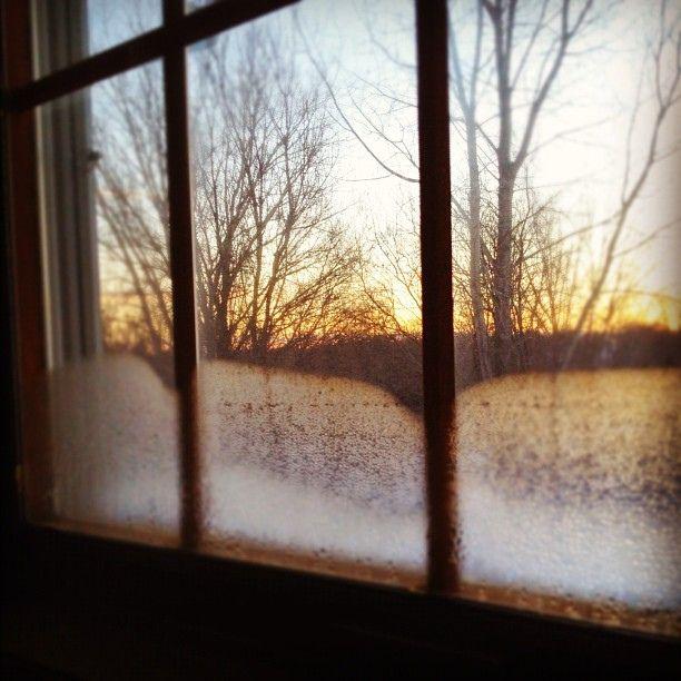 pretty world, naomiella on flickr