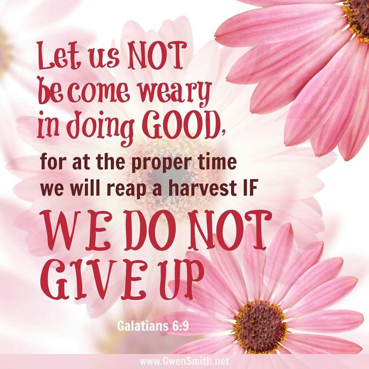 NEVER give up doing good. God is a rewarder to those who does what he says.