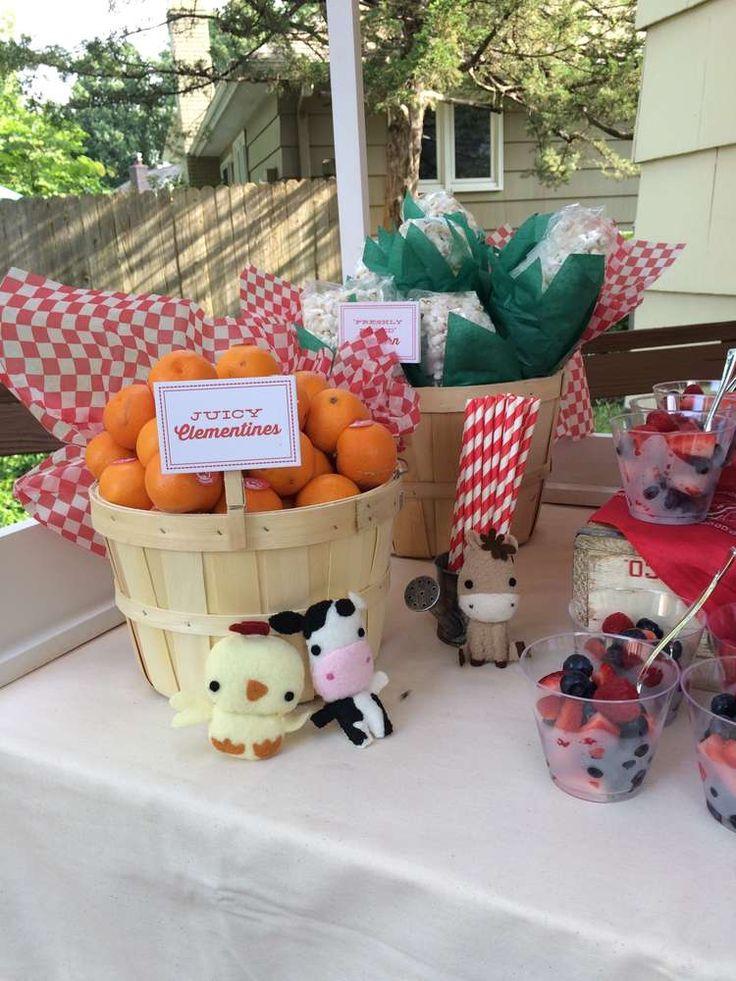 Farm Birthday Party Ideas | Photo 7 of 19
