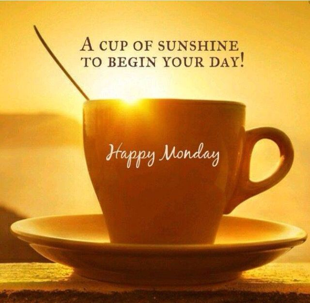 Have a beautiful week!!!! ☕☕ Oh, this is so nice, the sun ...