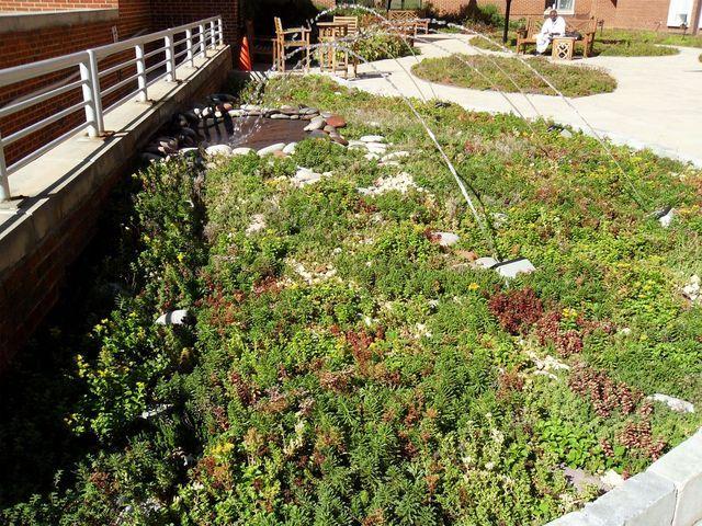 """Daca nu ajungeti in natura, aduceti natura la dvs. cu o terasa verde  Se stie ca natura si plantele in general sunt elemente foarte benefice in viata noastra. O iesire in mijlocul naturii ne face sa ne simtim revigorati si ne incarca bateriile, cum s-ar spune. Insa nu avem mereu timp de """"mini-calatorii"""" in mijlocul naturii, din pacate. Ritmul alert al...  http://articolebiz.ro/daca-nu-ajungeti-natura-aduceti-natura-la-dvs-cu-terasa-verde/"""
