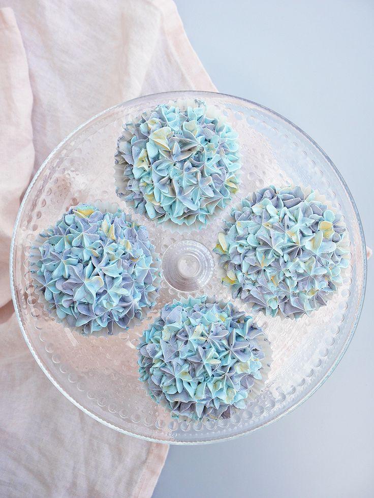 Hortensia cupcakes med blåbär. Blueberry hydrangea cupcakes.