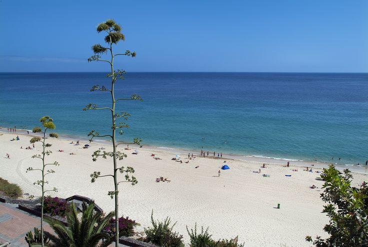 Morro Jable Beach! Sun, sea, sand and good times!