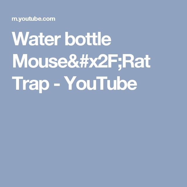 Water bottle Mouse/Rat Trap - YouTube