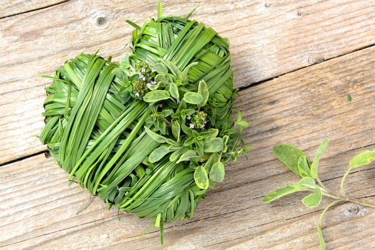 A deeper, medical look into the best 7 hypotensive herbs that can help you treat and control high blood pressure .