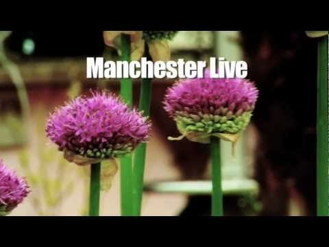 #Manchester Tourism  www.mydentaltourism.com  www.mydentaltourism.com