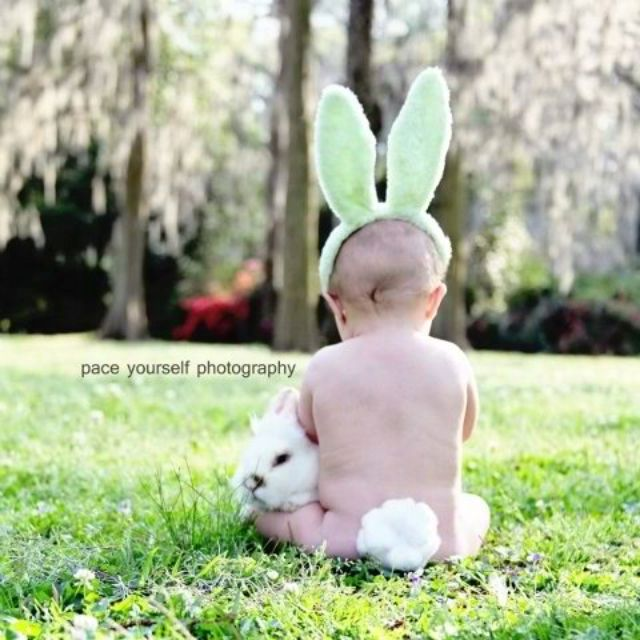 little love bunny! Love this picture!: Pictures Ideas, Easter Photos, Photos Ideas, Easter Pictures, Cute Ideas, Baby Bunnies, Easter Bunnies, Easter Pics, Easter Ideas
