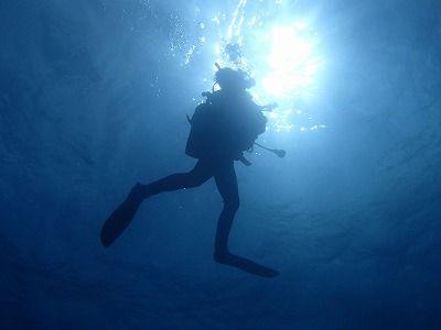 沖縄 ダイビング 一人旅@沖縄ダイビングショップ サニーズ - 沖縄でダイビングライセンス取得するなら【沖縄ダイビングショップ サニーズ】