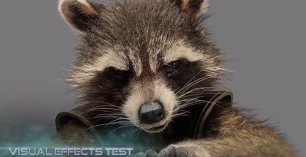 rocket raccoon movie | rocket-raccoon.jpg