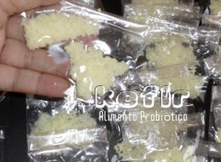 reserva de grãos de kefir - como congelar e descongelar