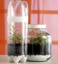 M s de 1000 ideas sobre mini invernadero en pinterest - Mini invernadero casero ...