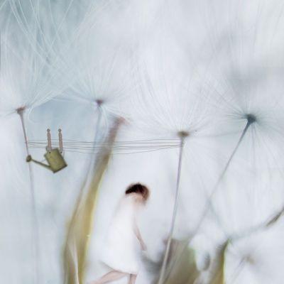 80 best Photographers / Mirjam Appelhof images on Pinterest | Blur ...