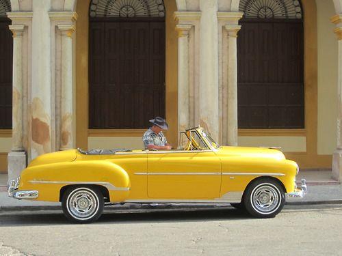Cuban Cowboy and the Bumble bee