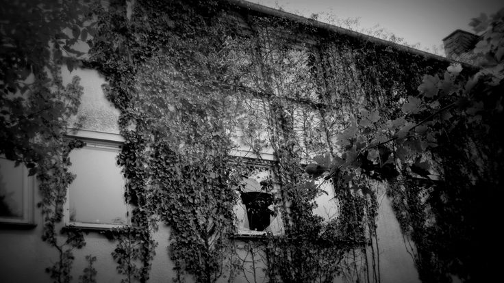 Old deserted Building in Germany
