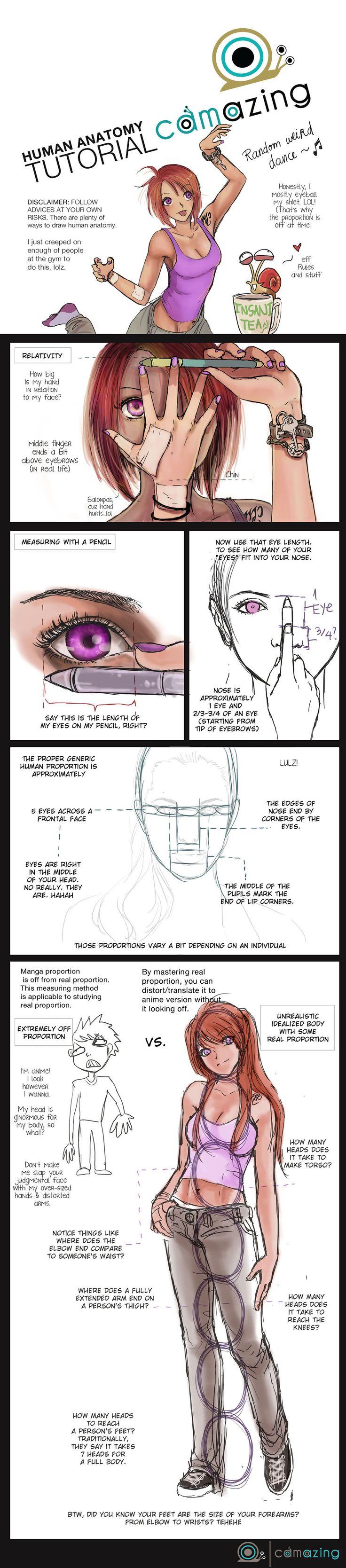Anatomy Proportion Tutorial by Camazing on deviantART