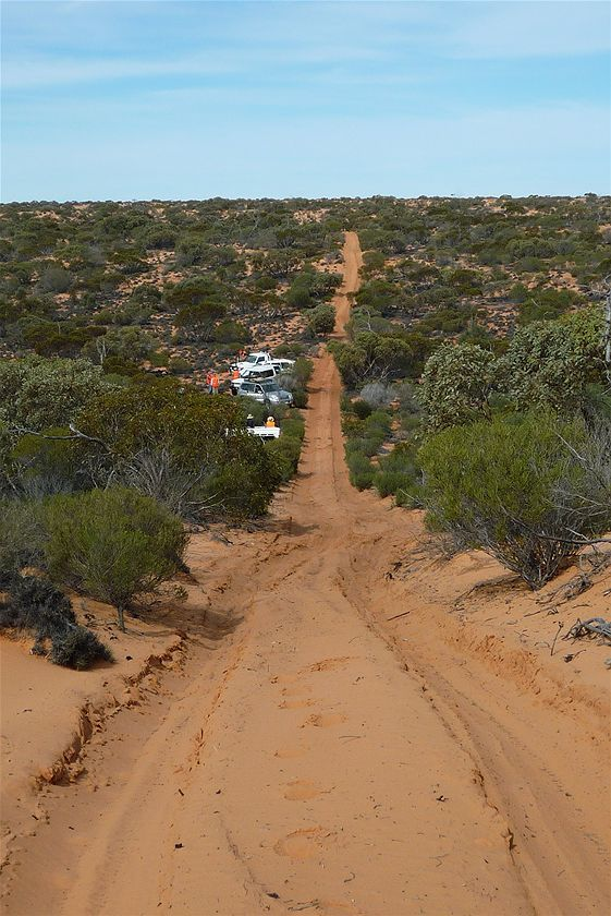 Googs track passes through the Yumbarra Conservation Park and the Yellabina Regional Reserve. The track has over 300 sand hills starting just west of Ceduna and finishing at Tarcoola. (Friends of the Great Victoria Desert)