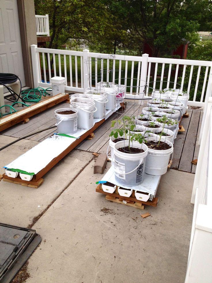 18 Best Gardening Rain Gutter Grow System Mine Images